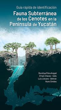 Fauna subterránea de los cenotes en la Península de Yucatán