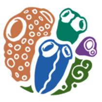 """""""Taxonomia y Riqueza de Esponjas Cripticas (Porifera: Demospongiae) en zonas arrecifales en el Banco de Campeche, Suereste del Golfo de Mexico"""