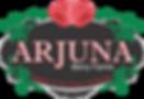 Arjuna Berries.png