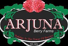Arjuna Berries Logo.png