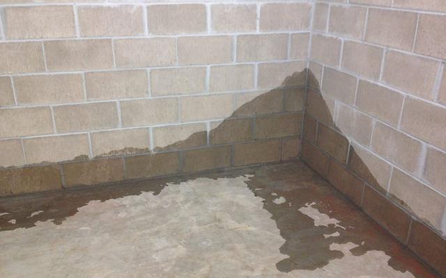 Coquitlam Wet Basement.jpg