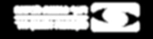 לוגו רשף סוכנת לביטוח מקבוצת אמנון גור