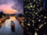 방콕 암파와 주말시장_반딧불투어_녹투어.jpg