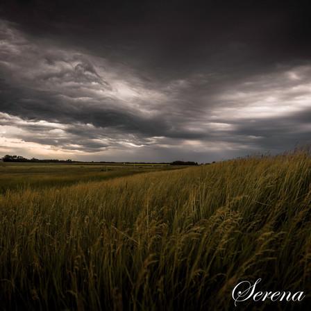 storm3 (1 of 1).jpg
