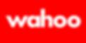 Logo Wahoo 400x200 2000ppi.png