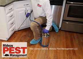 Pest Control Service Midway Pest Managem