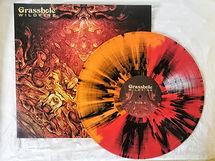 Vinyl 2.jpeg