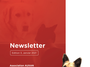 (Français) NEWSLETTER AUXAN, Edition 3, Jan 2021