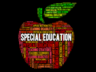 What is different about a Special Education teacher