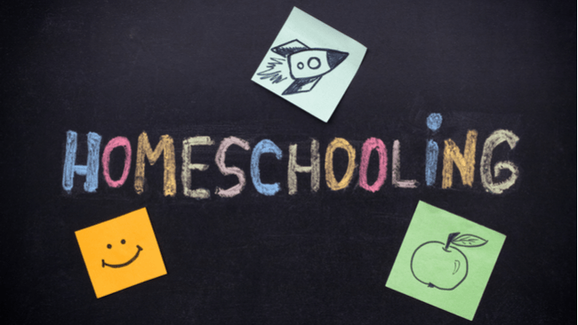 FAPE FOR ONLINE CURRICULUM AND HOME SCHOOL STUDENTS