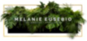palms_bg.jpg