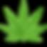 """CBD (CANNABIDIOL) UND  DIE CANNABISWELT    CBD wird von der CannabispflanzeCannabis Sativaproduziert und ist eines der über 100 sogenannten Cannabinoide,  die in Cannabis vorzufinden sind.    Cannabis wird auch als """"Hanf"""" oder """"Industriehanf"""" bezeichnet.  CBD ist das am zweitstärksten geballte Cannabinoid einer  Hanfpflanze und löst im Gegensatz zu THC keinen Rausch aus.  Somit hat im Gegensatz zu THC, CBD keine euphorischen oder psychoaktiven Auswirkungen auf Menschen. Der Zweck der Verwendung von CBD-Produkten mit einer hohen Konzentration von CBD ist nicht, um high zu werden, sondern um die vielen gesundheitlichen Vorteile zu nutzen, die mit dem Konsum von CBD verbunden sein könnten.Es entsteht somit kein Rausch und der sogenannte """"High"""" – Zustand bleibt aus.    Bei Mariuhana und Hanfhandelt es sich um zwei unterschiedliche Pflanzen, die jedoch derselben Gattung angehören und deshalb oft verwechselt werden. Hanf wird zum Beispielin der Landwirtschaft."""
