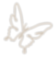 butterfly-icon-logo
