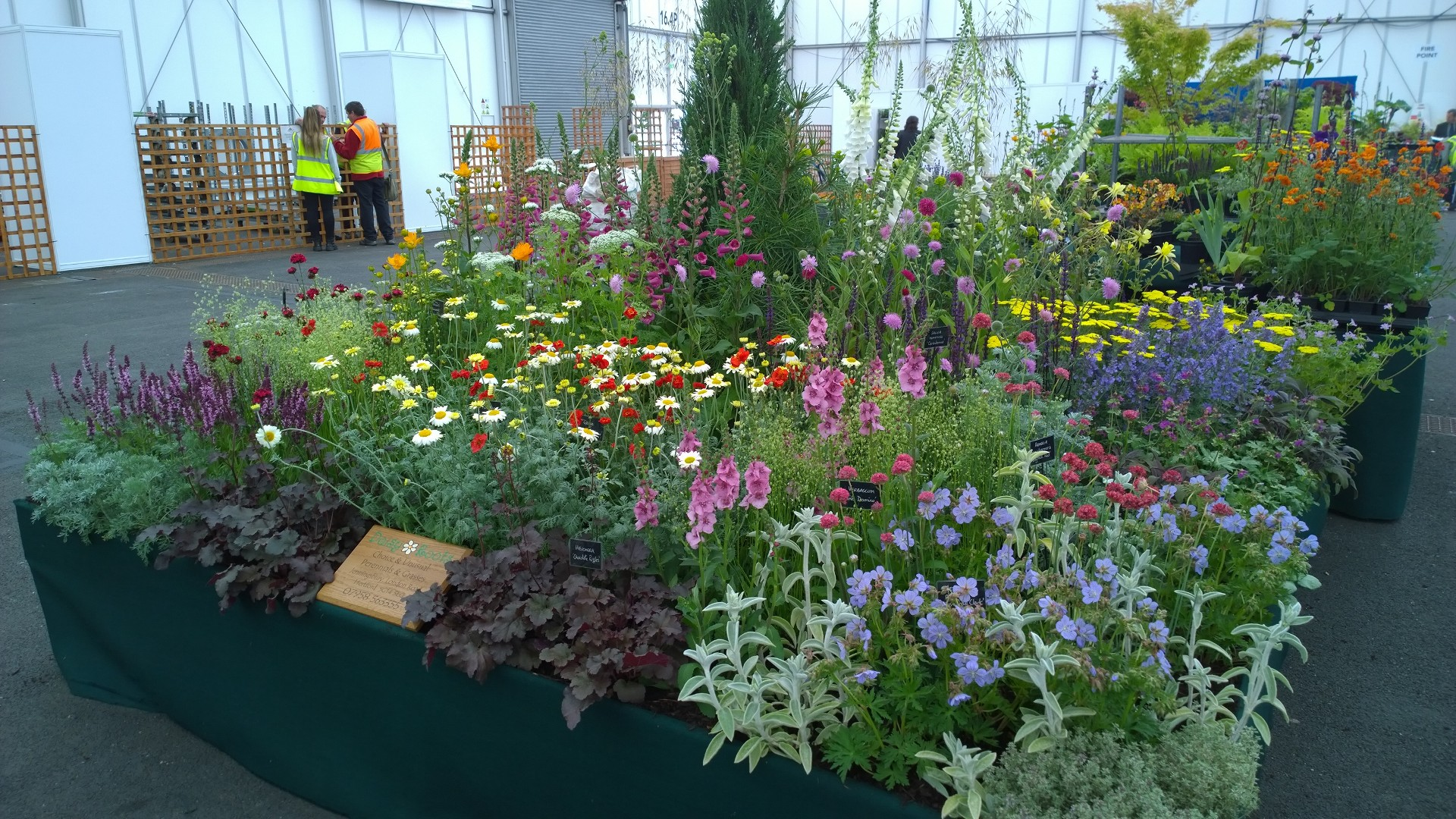 Gardeners World Live Show 2015