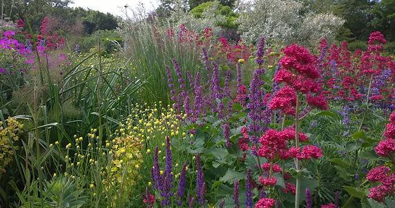 Garden design, nursery, hertford