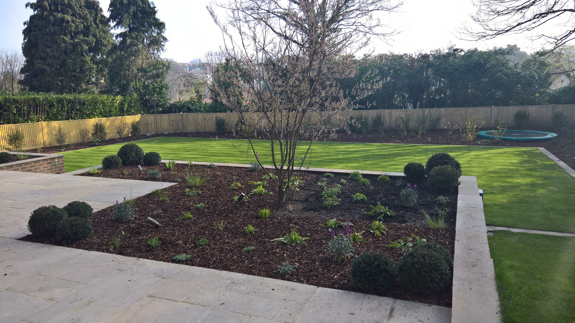 Tunbridge \Wells Project Newly Planted