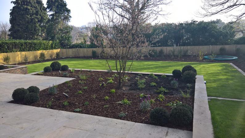 Tunbridge \Wells Project Newly Planted