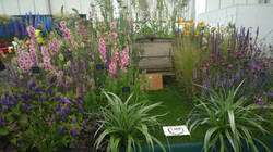 Gardeners World Live Show 2014