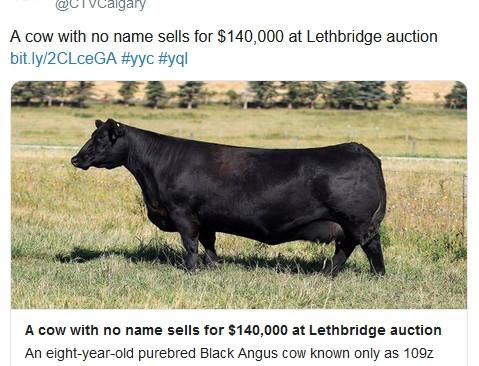 Уникальную корову продали на аукционе за $106 000