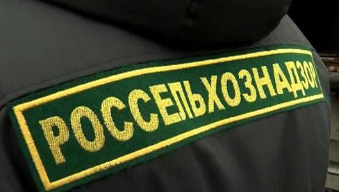 Россия будет добиваться признания еще пяти зон свободными от ящура