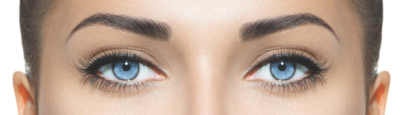 model brows and eyes only cover.jpg