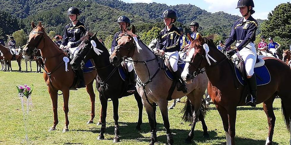 Equestrian - Teams Showjumping