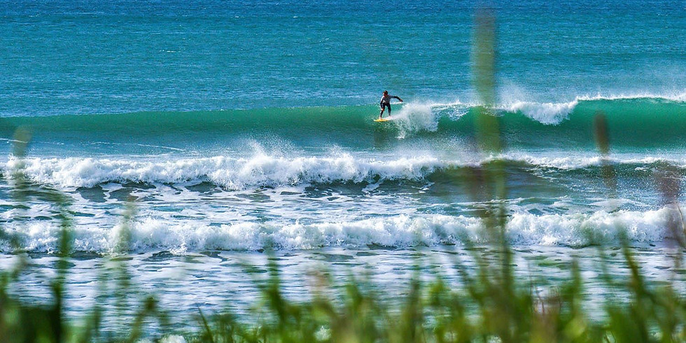 NSS SURFING SERIES #1