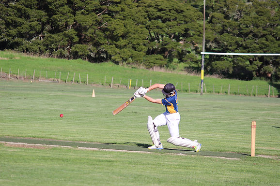CRICKETER ON THE RISE