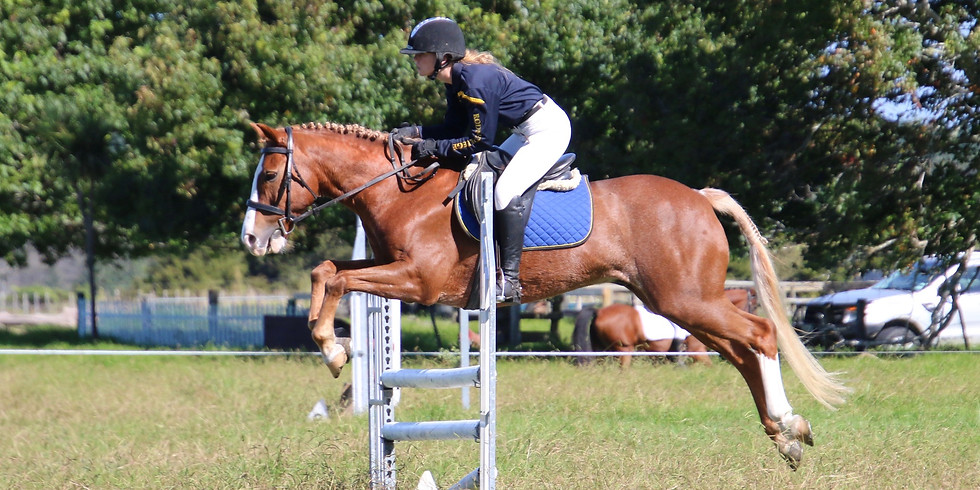 NSS Equestrian Show Jumping