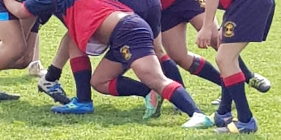 U15 Rugby Sevens Boys/Girls