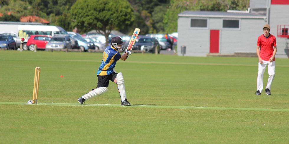 NSS Bruce Scott Cricket