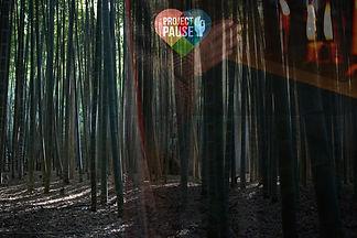 banner_final.jpg