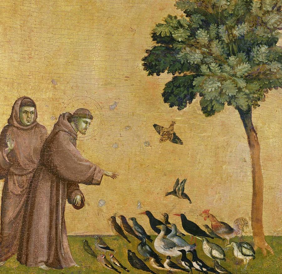 São Francisco de Assis  de Giotto  di Bondone