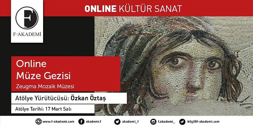Zeugma Mozaik Müzesi - Online Sunum
