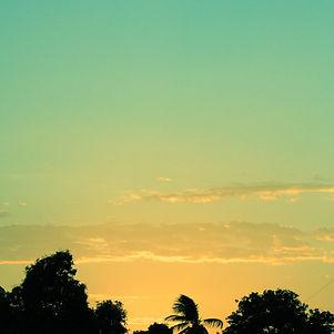 Canva - green sunset.jpg