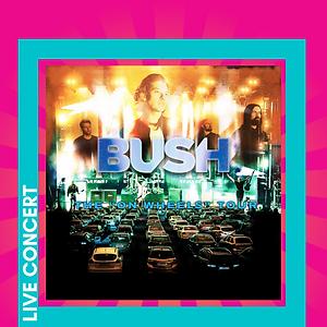 Website graphic BUSH.png