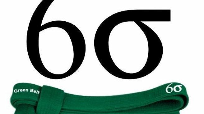 12 MSI - E learning Six Sigma Green Belt Español
