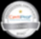 Certiprof-Design-Thinking-Professional-C