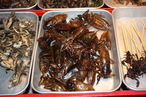 Os insetos para você degustar na Khao San Road