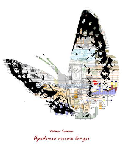 Natura Technica - Lange's Metalmark Butterfly