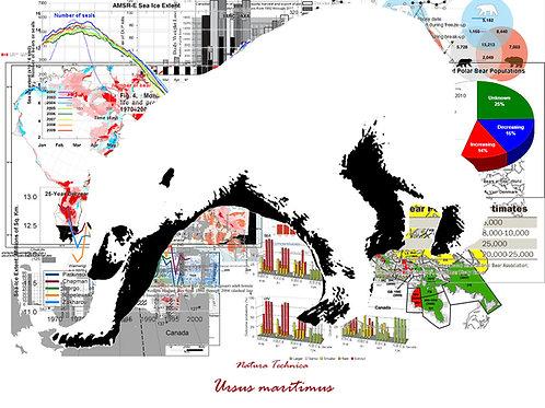 Natura Technica - Polar Bear