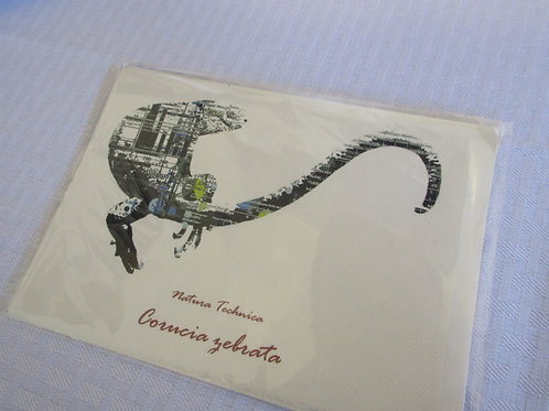 Solomon Island Skink - Natura Technica Blank Card and Envelope