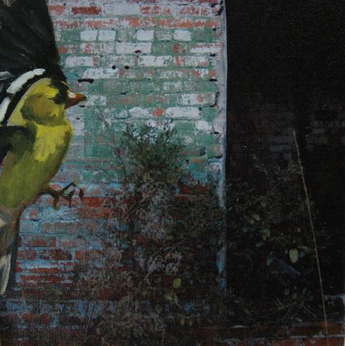 Bynum Mill - Goldfinch