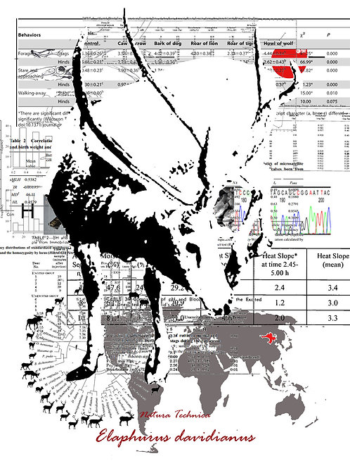 Natura Technica - Pere David's deer