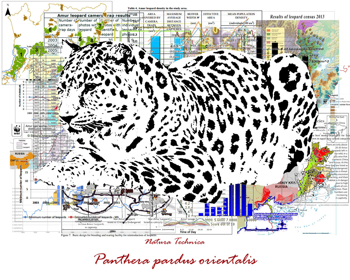 Natura Technica - Amur Leopard