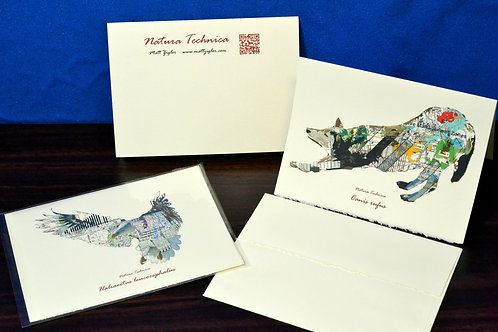 African Penguin - Natura Technica Blank Card and Envelope