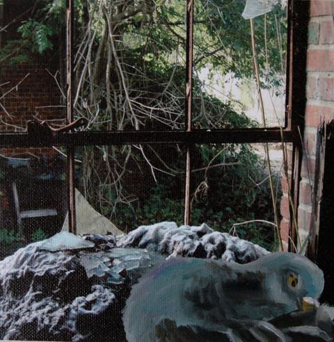 Bynum Mill - Pigeon