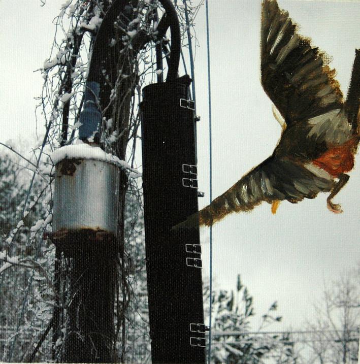 Bynum Mill - Robin
