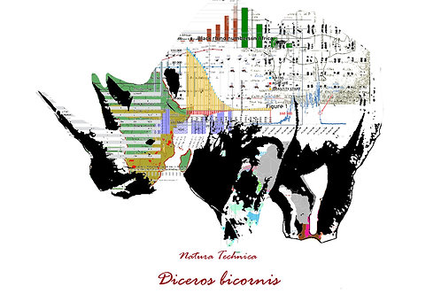 Natura Technica - Black rhinoceros