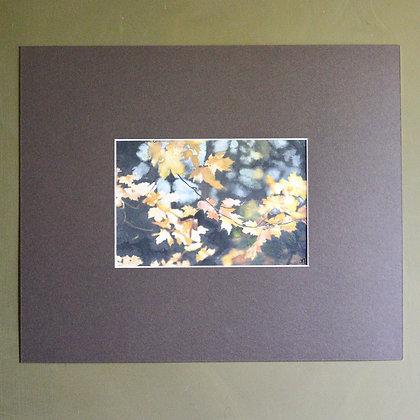 'Autumn Wood II' Painting